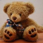 ผัวฟ้องเมียเก่า ซุกอุปกรณ์ดักฟังในตุ๊กตาหมี