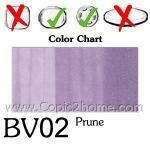 BV02 - Prune