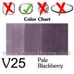 V25 -Pale Blackberry