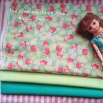 ผ้าคอตตอนสั่งจากอเมริกาขนาด 22.5 x 27.5cm +ผ้าพื้นในไทย 2 โทน ขนาด25x27.5 cm สั่งหลายจำนวนผ้าต่อกันค่ะไม่ตัดแยก