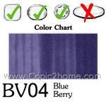 BV04 - Blue Berry