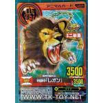 Panthera Leo [Pr] A-007