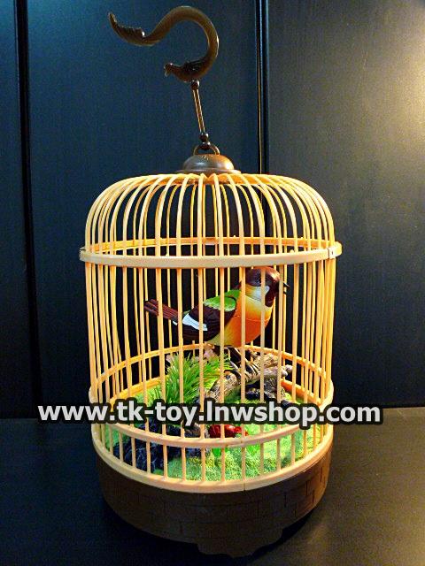 นก อิเล็กทรอนิกส์ ระบบเซ็นเซอร์
