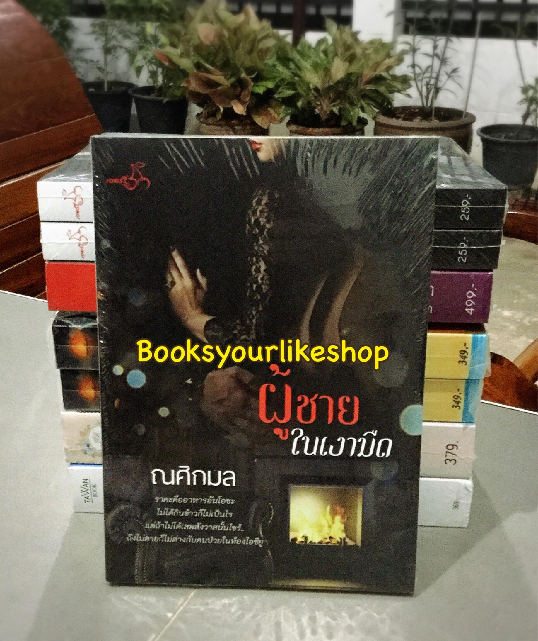 ผู้ชายในเงามืด / ณศิกมล ( ซินเหมย ) หนังสือใหม่ทำมือ***สนุกคะ***