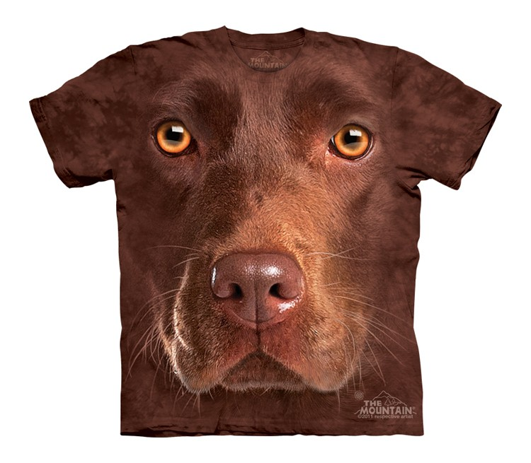 Chocolate Lab Face - Youth