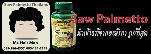 Saw Palmetto Thailand