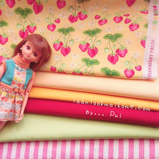 ผ้าคอตตอนสั่งจากอเมริกาขนาด 22.5 x 27.5cm +ผ้าพื้นในไทย 4 โทน ขนาด25x27.5 cm สั่งหลายจำนวนผ้าต่อกันค่ะไม่ตัดแยก