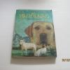 หมากับแมว ชีลา เบิร์นฟอร์ด เขียน สุทธิ โสภา แปล***สินค้าหมด***