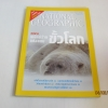 NATIONAL GEOGRAPHIC ฉบับภาษาไทย กุมภาพันธ์ 2547 หมีขาวพยัคฆ์ร้ายแห่งแดนขั้วโลก***สินค้าหมด***
