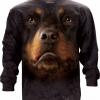 Rottweiler Face (LS)