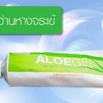 เจลว่านหางจระเข้ขององค์การเภสัช Phytocare Aloe Gel 30กรัม