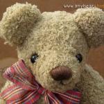 ตุ๊กตาหมีผ้าขนขอดสีโกโก้ขนาด 32 cm. - Brownie