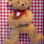 Teddy - honey ขนาด 45 ซม.