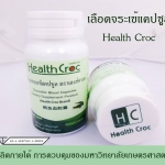 Health Croc เลือดจระเข้แคปซูล
