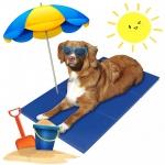 แผ่นรองนอนทำความเย็น เบาะความเย็นสุนัข ที่นอนเจลเย็น แผ่นเจลเย็นรองนอนสุนัข ราคาถูก สุนัขและแมว