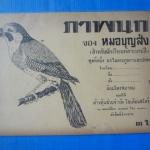 ภาพนก ของ หมอบุญส่ง ( สำหรับนักเรียนหัดระบายสี )
