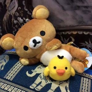 ตุ๊กตาหมี ริลัคคุมะ นอนตะแคงกับลูกเจี๊ยบ san-x ขนาด 8 นิ้ว