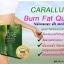 Core Caralluma คอร์ คาราลลูม่า thumbnail 6