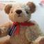 ตุ๊กตาหมีผ้าขนแกะขนาด 23 cm. - Banoffee thumbnail 4