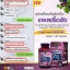 auswelllife grape seed 50000 mg เมล็ดองุ่น เกรพซีด thumbnail 9