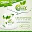 Colly Chlorophyll คอลลี่ คลอโรฟิลล์ thumbnail 1