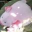 ตุ๊กตาหมูผ้าขนหนูสีชมพู ขนาด 33 cm. - Piggato thumbnail 3