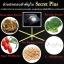 Secret Plus ซีเครทพลัส กล่องดำ น้ำส้ม thumbnail 10
