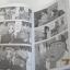 นินจานารูโตะ ภาคพิเศษ ตอน ผมขอเป็นฮีโรด้วยคนนะ เล่มเดียวจบ thumbnail 3
