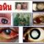 blueberry eyecare softgel บลูเบอร์รี่ อายแคร์ ซอฟท์เจล thumbnail 9