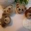 ที่ห้อยโทรศัพท์มือถือหัวหมีทำจากใยขนแกะ งาน neddle felt thumbnail 1