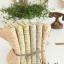ผ้าจัดเซ็ทลายดอกไม้แนววินเทจนำเข้าจากเกาหลี thumbnail 4