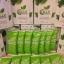 Colly Chlorophyll Fiber Plus คลอลี่ คลอโรฟิลล์ ไฟเบอร์ พลัส (15ซอง/กล่อง) จำนวน 1กล่อง thumbnail 18