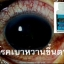 blueberry eyecare softgel บลูเบอร์รี่ อายแคร์ ซอฟท์เจล thumbnail 7