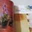 ดอกไม้ประดิษฐ์จากเนื้อถุงน่อง อ.ศจีรัตน์ สุวรรณโพธิ์ เขียน thumbnail 2