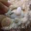 ตัวจุดหมุนขนาด 20 mm. thumbnail 3