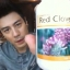 red clover unicity thumbnail 1