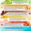 อาหารเสริมโดม ปกรณ์ ลัม Do-Me โดมี่ thumbnail 4