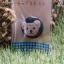 เข็มกลัดกระดุมรูปหมีเท็ดดี้ thumbnail 4