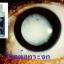 blueberry eyecare softgel บลูเบอร์รี่ อายแคร์ ซอฟท์เจล thumbnail 8