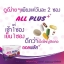 All plus morning and dinner drink ออลพลัสดริ้งค์ thumbnail 5