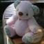 ตุ๊กตาหมีผ้าขนสีชมพูขนาด 18 cm. - Roll thumbnail 2