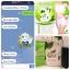 Colly Chlorophyll Fiber Plus คลอลี่ คลอโรฟิลล์ ไฟเบอร์ พลัส (15ซอง/กล่อง) จำนวน 1กล่อง thumbnail 12