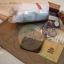 ชุด Kit ทำตุ๊กตาหมี 10 cm. - Muffin Bear (Brown) thumbnail 4
