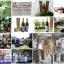 คาวตองแม็กซ์ Kour Tong Max thumbnail 5