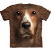 Big Face Dog Welsh Springer Spaniel T-shirts