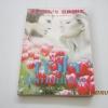 หัวใจในม่านหมอก (Devil's Bride) Rachelle Edwards เขียน จริยา แปล***สินค้าหมด***