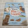 หนังสือภาพธรรมชาติสำหรับเด็ก สำรวจชีวิตในแม่น้ำ Song So Young เขียน Shin Min Jae & Park Hyang Mi ภาพ ธนวดี บุญล้วน แปล