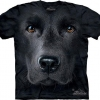 The Big Face Black Labrador dog T-Shirts