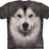 Big Face Alaskan Malamute Face T-Shirts