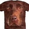 Big Face Brown Chocolate Labrador Dog Face T-Shirts